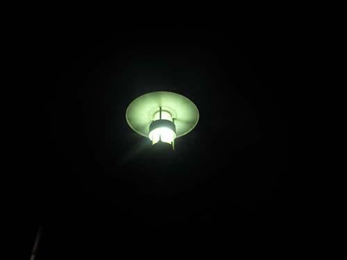 Aufgabe Fotoralley etwas, das leuchtet, ein Tier, das fliegt (nicht zu erkennen)