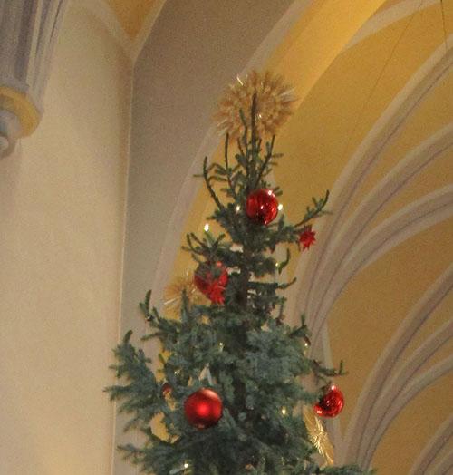 Baumspitze vor Kirchendecke