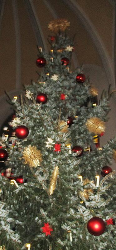 Baum Ausschnitt